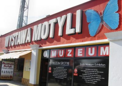 muzeum motyli WCZASYREMEDIOS ŁEBA